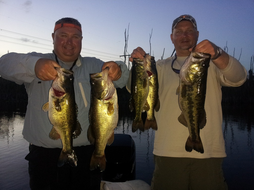 Everglades Fishing with Capt. Tony