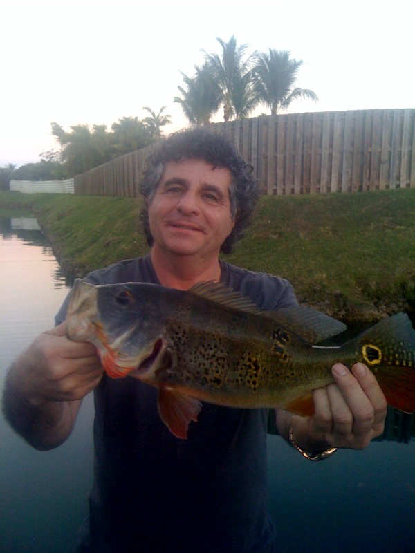 Peacock Bass Fishing – Miami, Florida
