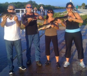 Everglades Guide trip rates